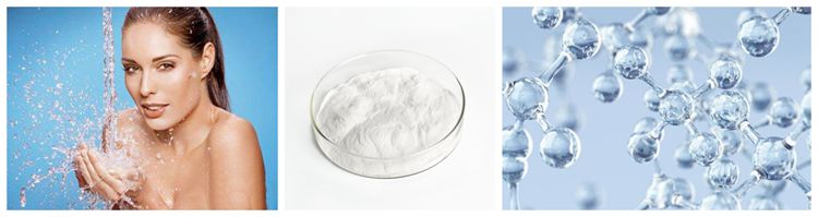 Xi`an SOST ISO Supply Pure Hyaluronic Acid Powder