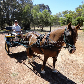 Carriage for new people, how to drive a horse drawn carriag
