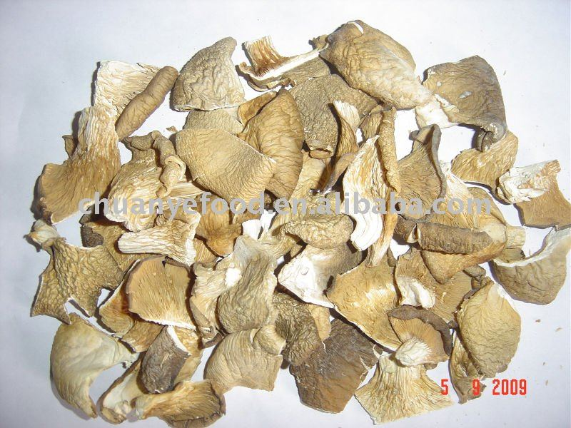 Dried Grey king Oyster Mushroom