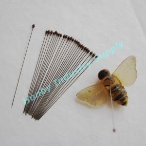 https://sc01.alicdn.com/kf/HTB12DD.IFXXXXaMXFXXq6xXFXXXp/Entomology-stainless-steel-mounting-insect-pins-100.jpg