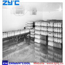 Milk cold room / cold storage for wine
