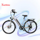Country woman, 500w elektrik electric bike, panasonic ebike