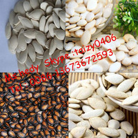 High Buying Rate China First-class Technology Pumpkin Seed Hulling ...