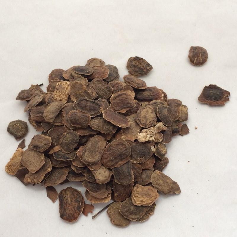 hainan High purity Dalbergia odorifera seeds Cocobolo Wood seeds