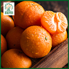 Fresh satsuma mandarin seedless orange