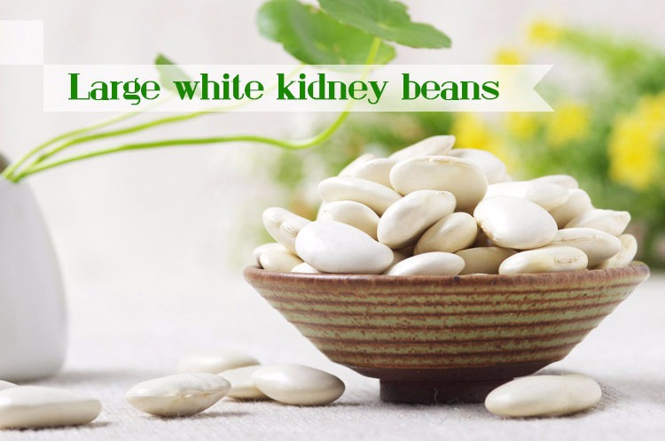High protein natural large white kidney beans