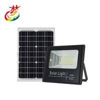 New Design Solar Flood Light Led 2500Lm 4000Lm 6000Lm 10000Lm 100W Led Flood Light Spare Parts