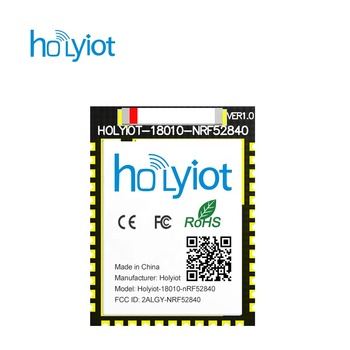 Holyiot Long Range Nordic Nrf52840 Chipset Ble Module Ceramic Antenna  Bluetooth Low Energy For Bluetooth Mesh - Buy Nrf52840 Module,Long