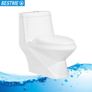 Brilliant water ridge one piece dual flush toilet sanitary ware toilet