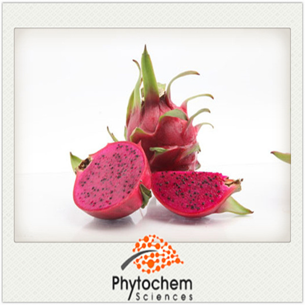 dragonfruit juice powder for beverage