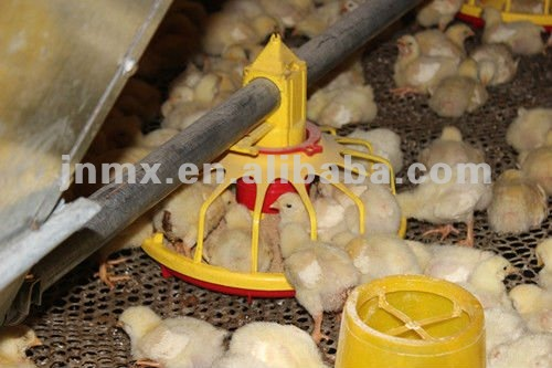 Poultry farming house breeds of broiler chickens equipment