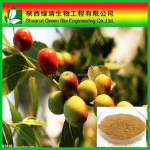 Spine Date Seed Extract Sour Jujube Extract/The Most Trusted Professional Manufacturer Quality Assurance Top Quality Spine Date