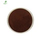 ISO factory supply high quality instant black tea powder