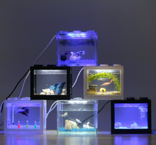 fancy fish tank, fancy fish tank suppliers and manufacturers at