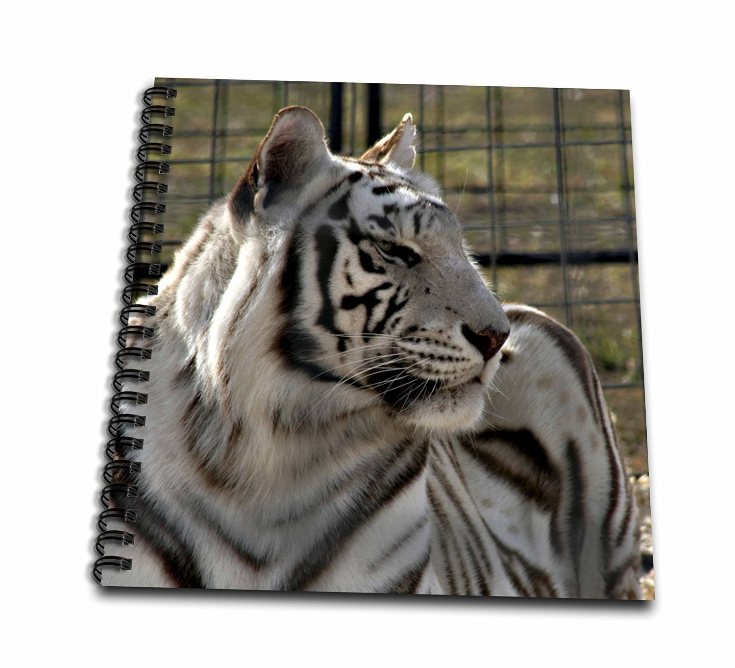 Susans Zoo Crew Animals - white tiger looking right - Memory Book 12 x 12 inch (db_184829_2)