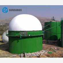 Domestic biogas generate electricity biogas container/double membrane biogas holder