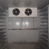HIgh quality customized cold vegetables storage walk in freezer room