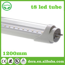 2ft 4ft 8ft G13 FA8 UL DLC T8 integrated LED light tubes with ballast compatible