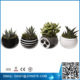 small flower magnets,magnetic plant pot,decoration half round wall planter