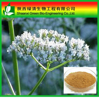 Valerian Root Extract Valeric Acid/Valeric Acid Powder/High Quality Valerian Root Extract