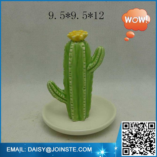 wholesale cactus,cactus,cactus and succulents