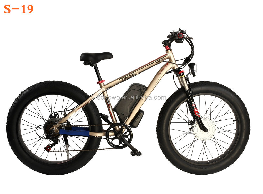 Double Battery Long Range Electro Bike Buy Electro Bike Double