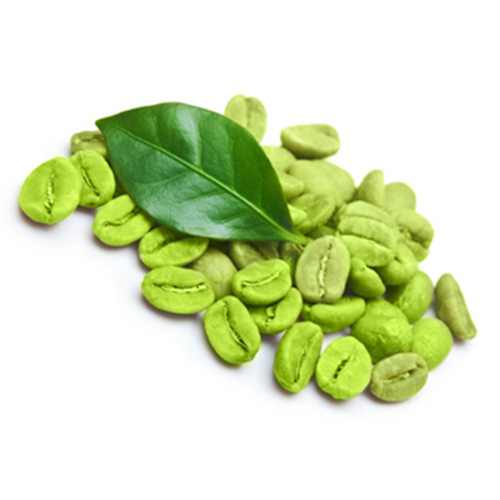 Natural Green Coffee Bean Extract Powder Green Coffee Extract From Big Factory Buy Green Coffee Extract Green