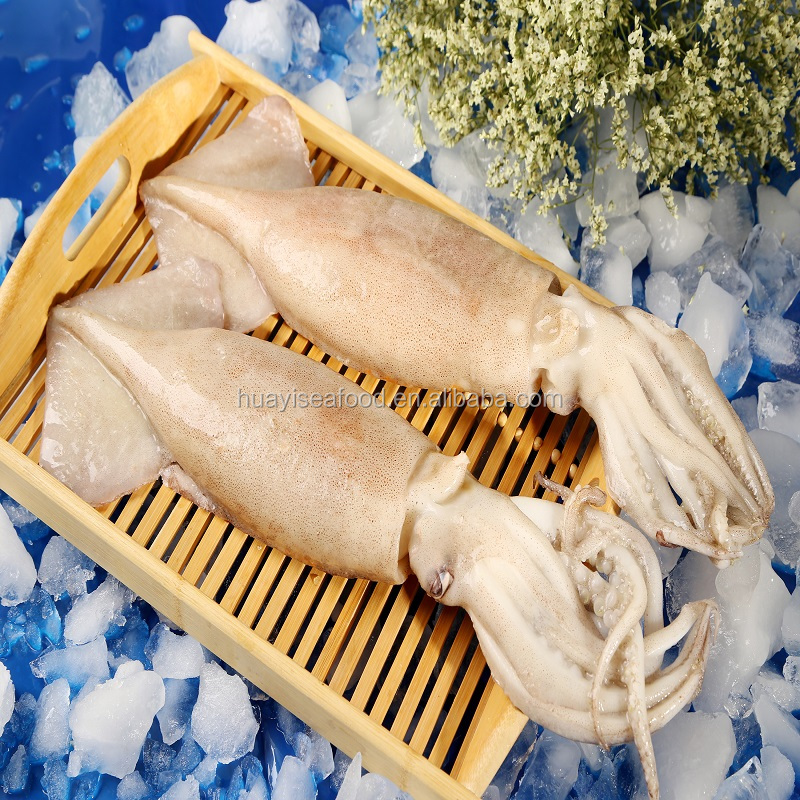 Chinese Seafood Supplier Supply Frozen Squid Low Price - Buy Frozen  Squid,Seafood Supplier,Frozen Squid Price Product on Alibaba com