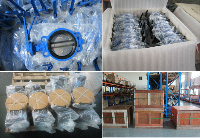 High Quality Cast Iron Pn16 Table E Flange Wafer Type Butterfly ...