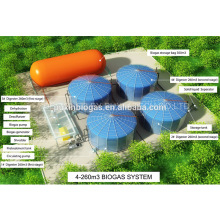 Guangdong New Energy Technology Anaerobic Digestor And Biogas Plant Project