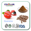 Guarana Powder Extract 10% with High Quality! Organic Certified Company!