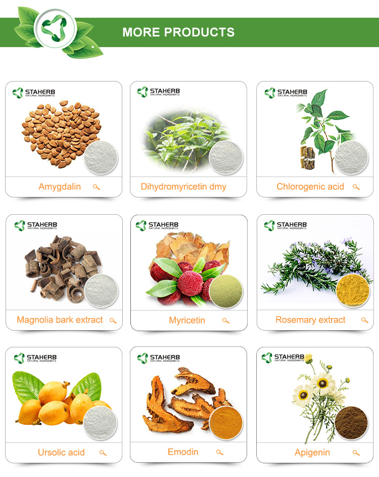 Factory supply Dietary supplement material Chasteberry extract Cranbeery seed extract