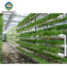 Automated management Multi-span 200mic 150mic thickness Plastic film hydroponic system Greenhouse for tomato paprika