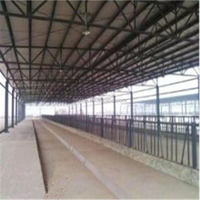 Famous steel structure livestock house dairy shed cow barn cattle farm