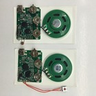 Recordable sound recording module for books