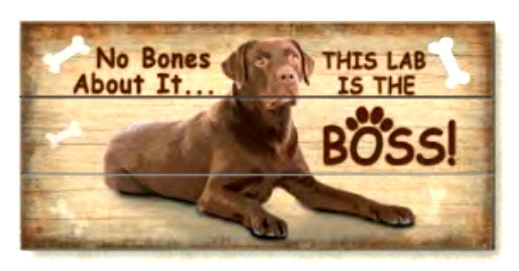 Lab is The Boss Reclaimed Art Wood Box