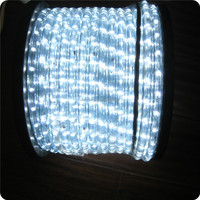 120V 2wires 100 Meter garden rope light