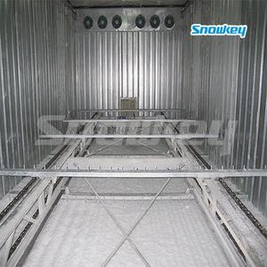 Newest design cold room walk in freezer with low price ice bin ice storage