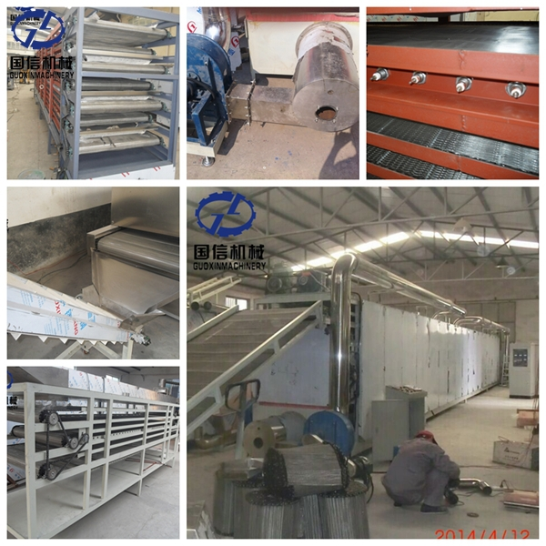 Factory price dried mango drying machine price