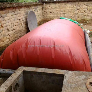 China PVC red-mud bio gas for biogas plant india for waste management