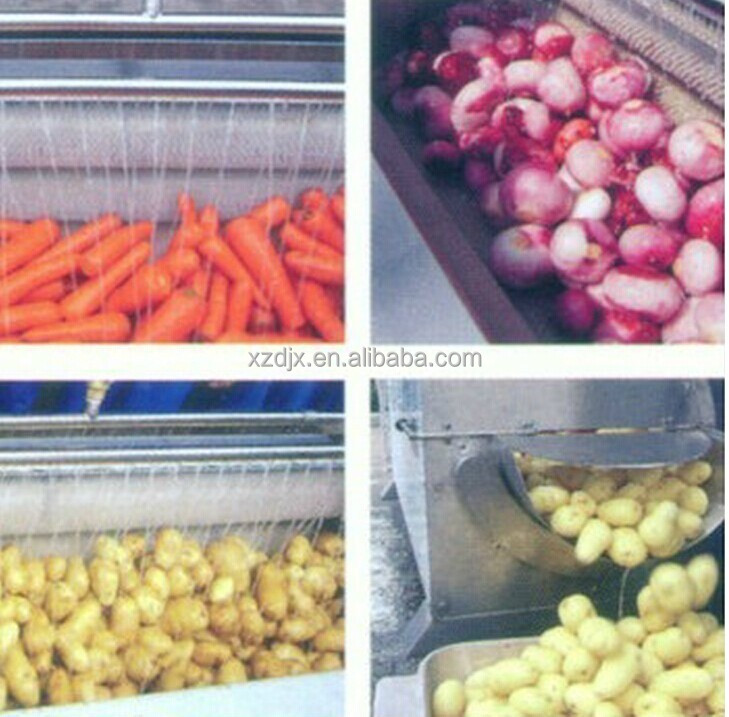 Industrial Fruit And Vegetable Washing Equipment Cleaner