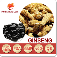 Wholesale Herbal Ginseng extracts Ginseng products