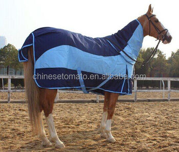 Mini Horse Rugs For Winter