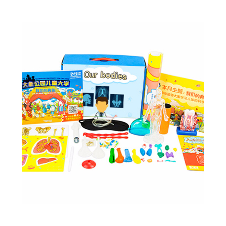 Our bodies Understand The Composition Of Human Organs Stem Kit Educational Science Toy
