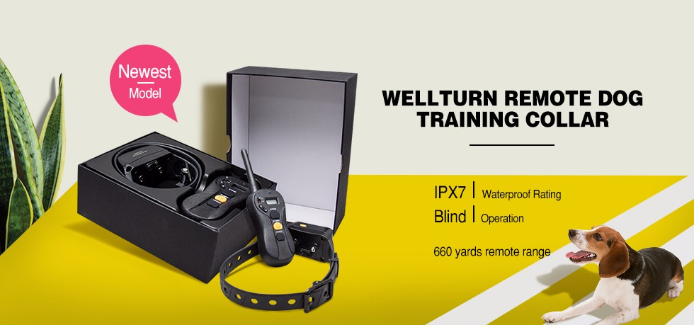Rechargeable Remote Training Collar P620 600 Meters