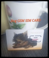 Top up 2G GSM cell phone sim card