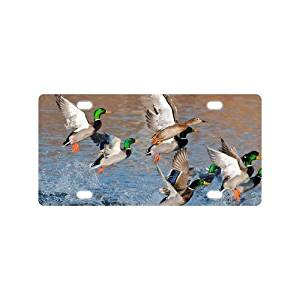 "Fashionable Novelty Tag Cute Mallard Ducks Flying Durable Aluminum Car License Plate 12"" X 6"""