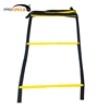 Chinese Hot Selling Agility Ladder with Cones for Training Ladder