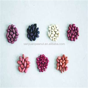 china round size factory blanched groundnut kernel peanuts 1kg price