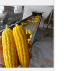 vacuum foods canned sweet corn 340g
